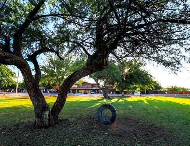 Roosevelt Resort Playground Tire Swing